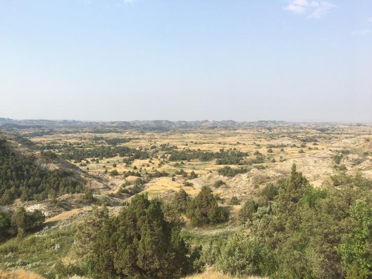 1f - TR (Landscape)