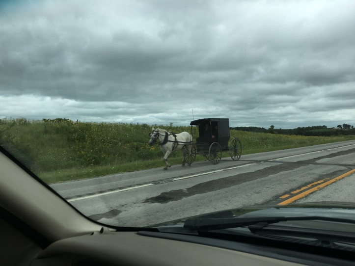 2a - Amish Buggy