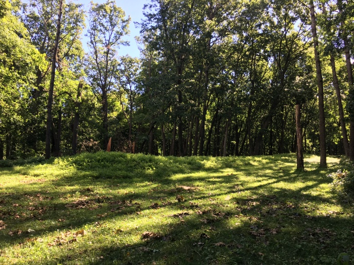 2a - Effigy Mounds