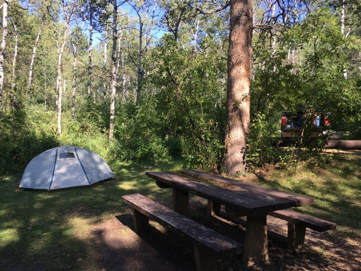 7 - Campsite in Oreville Campground