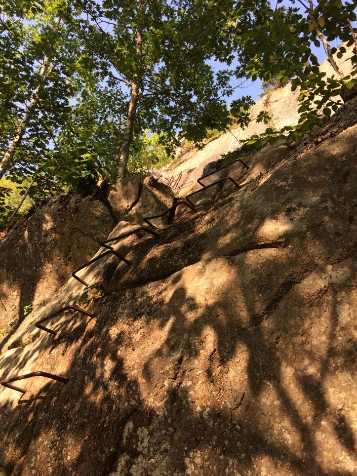 2f - Trail 1