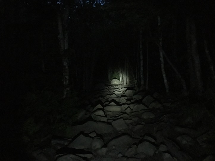 6u - Beehive Trail Dark